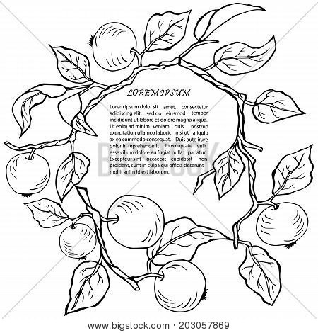 Wreath with apples on isolated on white backgroud. Design element. It can be used for flyers, cover, invitation, birthday, greetings, Thanksgiving, Shana Tova card.Vector illustration.