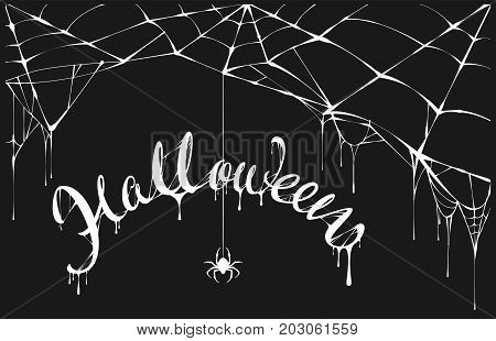 White spider and white spiderweb on black background. Halloween lettering text for greeting card. Vector illustration