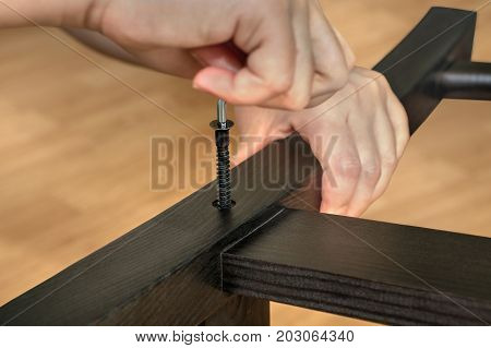 Assembling wooden furniture with furniture fasteners and a hexagonal wrench build a wooden chair at home. poster