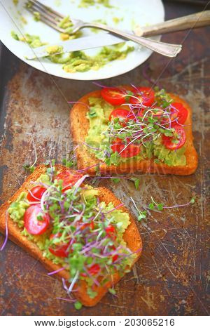 Avocado toast with cherry tomatoes and sprouts on old baking pan