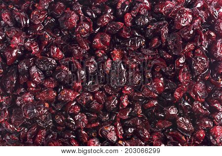 Background with dried cranberries. Food texture. Top view