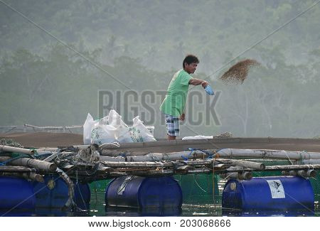 DAVAO ORIENTAL, PHILIPPINES--A man throws feeds the fish in a commercial farm in Davao Oriental in March 2016.