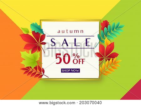 Vector illustration of fashionable autumn sale card template with geometric frame, text sign 50 percent off, falling multicolor leaves oak, rowan, maple, birch, willow, chestnut, ash