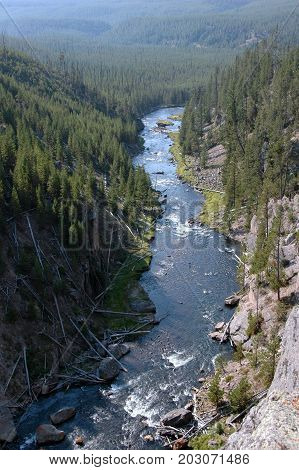 Gibbon River canyon in Yellowstone National Park