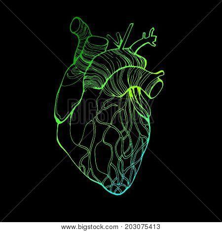 heart vector health love illustration life medical living art graphic