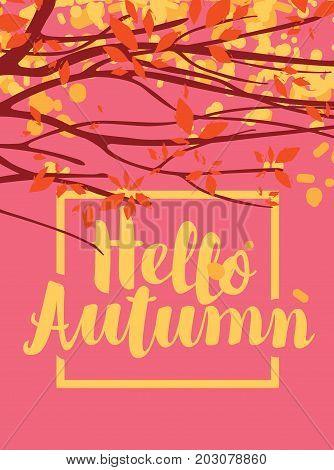 Vector banner with the inscription Hello autumn. Autumn landscape with autumn leaves on the branches of trees on the pink background