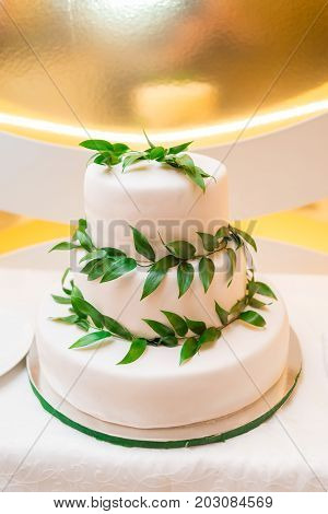 Elegant  White Multi Tiered Wedding Or Birthday Cake Decorated With Fresh Green Leaves On The Table,