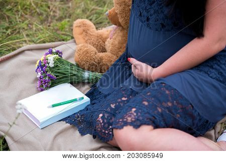 Pregnant woman in dress holding her tummy near teddy bear. Closeup of pregnant woman with teddy bear and diary sitting on blanket on green grass outdoors