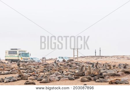 CAPE CROSS NAMIBIA - JUNE 29 2017: Unidentified tourists at the seal colony at Cape Cross with replicas of the cross planted by Diogo Cao in the back