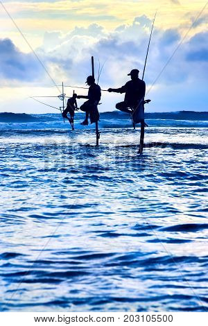 Sri Lanka, Galle - October 31, 2014: Traditional fishermen on sticks at the sunset in Sri Lanka. Seascape image in blue and yellow colors.