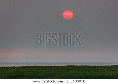Red sunset in a haze The smoke from wildfires in BC Interior has wafted into Vancouver. The smoke has made the sun turn red. Aug 2017.