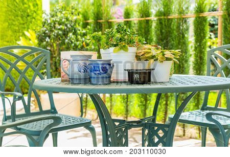 Outdoor patio with plants and pots
