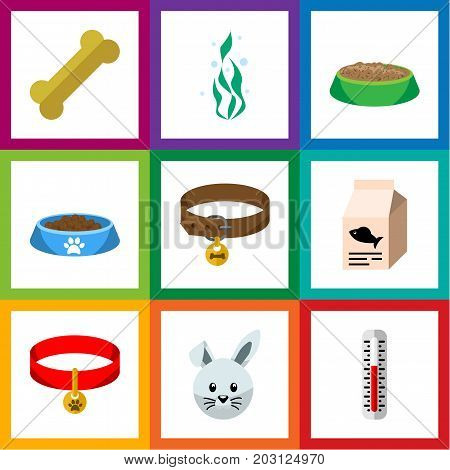 Flat Icon Animal Set Of Cat  Eating, Hound Necklace, Kitty Collar And Other Vector Objects