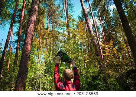 The logger in a red checkered shirt is holding an chainsaw against the forest