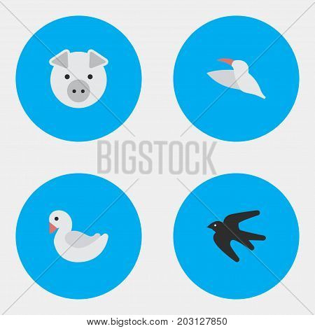 Elements Crane, Sparrow, Swan And Other Synonyms Swine, Crane And Stork.  Vector Illustration Set Of Simple Wild Icons.