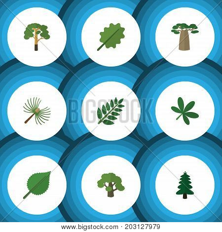 Flat Icon Ecology Set Of Rosemary, Tree, Wood And Other Vector Objects