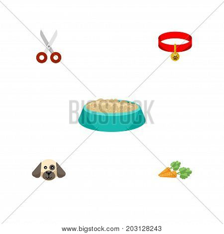 Flat Icon Animal Set Of Root Vegetable, Puppy, Kitty Collar And Other Vector Objects