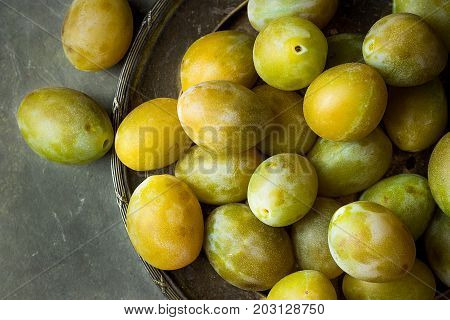 Ripe juicy colorful yellow and green plums on vintage metal dish. Dark concrete stone background. Styled image still life copy space. Autumn fall harvest magazine style.