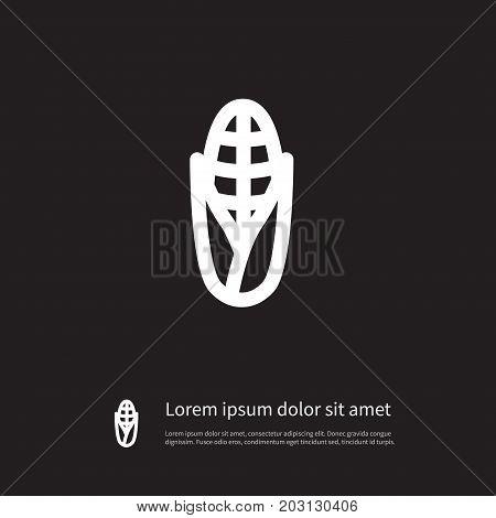 Popcorn Vector Element Can Be Used For Grain, Corn, Popcorn Design Concept.  Isolated Grain Icon.