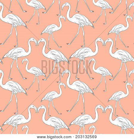 Hand drawn flamingo black outline sketch illustration. Exotic bird. Seamless pattern background