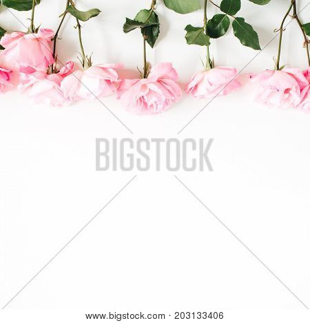 Pink roses on white background. Flat lay top view. Valentine's background. Floral pattern. Pattern of flowers. Blog hero image.