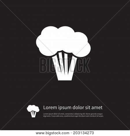 Tree Vector Element Can Be Used For Asparagus, Broccoli, Cabbage Design Concept.  Isolated Healthy Icon.