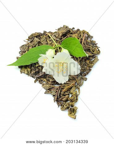 Green tea with fresh Jasmine twig isolated on white background.