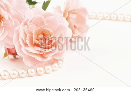 Close up of pastel pink roses with string of pearls. Muted dusty colors with copy space.
