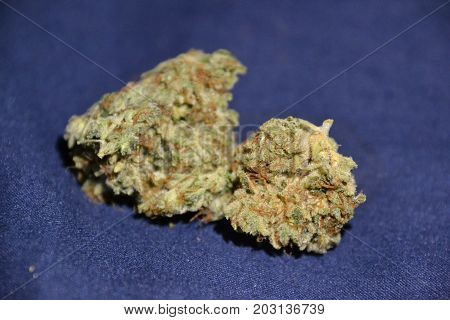 Dizzy OG  is an indica cannabis strain used for pain and insomnia