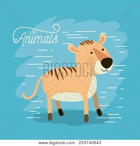 tiger animal caricature in color background with lines vector illustration