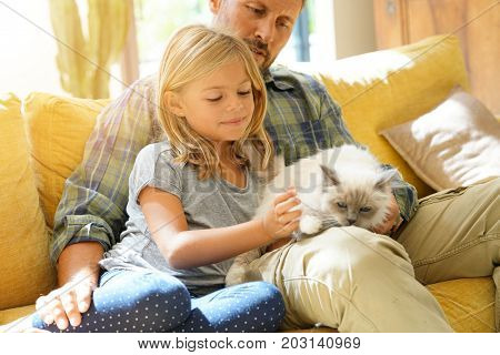 Daddy with little girl petting cat sitting on sofa