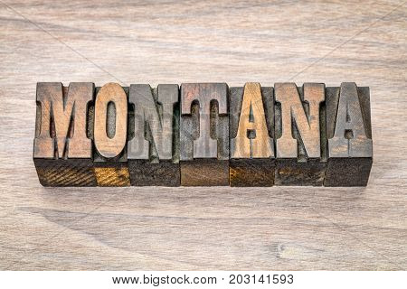 Montana -  word in vintage rustic letterpress wood type - French Clarendon font popular in western movies and memorabilia