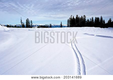 Landscape of snowy field with single set of ski tracks
