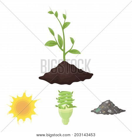 An ecological lamp, the sun, a garbage dump, a sprout from the earth.Bio and ecology set collection icons in cartoon style vector symbol stock illustration .