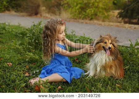 Cute little girl with a dog Sheltie breed. Best friends forever. Dog devotion. Girl stroking a pet in the park