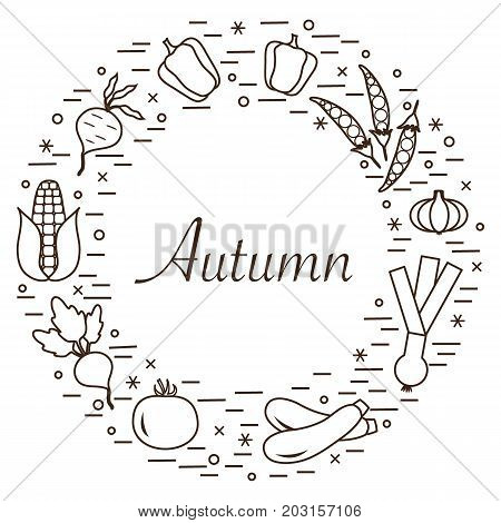Cute Vector Illustration Of Different Autumn Seasonal Vegetables Arranged In A Circle. Tomato, Beets