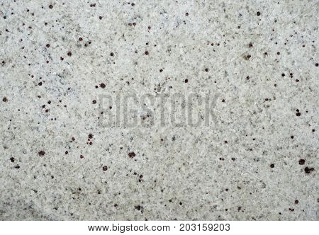 Whte granite tile texture with brown dots