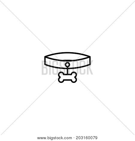 Collar flat icon. Single high quality symbol of line animal vector for web design or mobile app. Color sign of pet for design logo. Single pictogram on white background