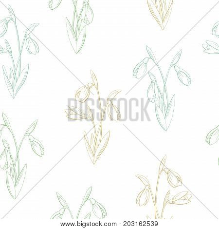 Snowdrop flower graphic color seamless pattern sketch illustration vector