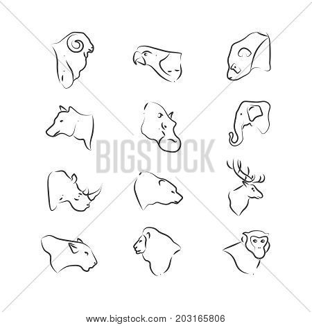 Wild animals heads icons on white background. Wild animal linear. Vector illustration