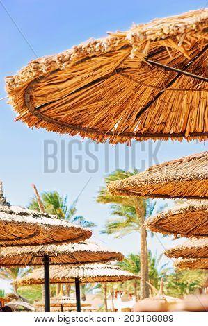 Wattled straw umbrellas on sunny summer beach. Egypt. Sharm-el-sheikh. Outdoors.
