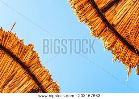 Two wattled straw beach umbrellas on clear blue sky background. Outdoors summertime multi colored closeup horizontal image. View from below.