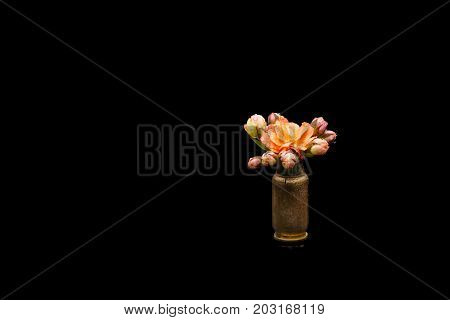 Orange watercolor flower into a riffle bullet symbolizing flower power against isolated on black