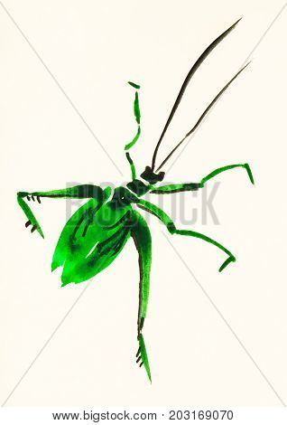 Green Grasshopper Hand Painted On Colored Paper