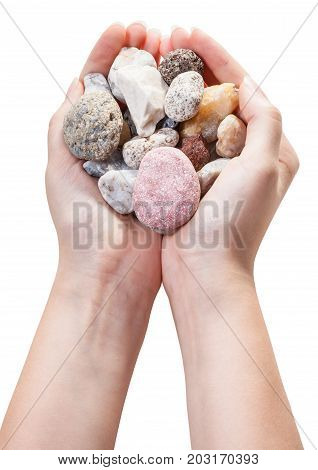 Various Natural Pebble Stones In Handful Isolated