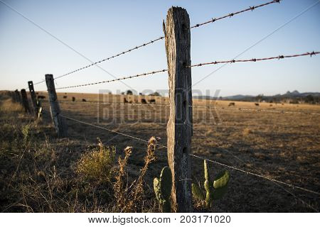 Rusted Sharp Timber And Metal Barb Wire Fence.