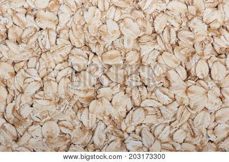 Close up oat flakes as background