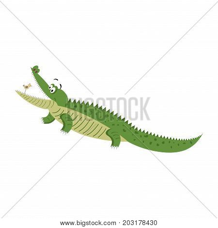 Cartoon crocodile with bird in wide open mouth isolated on white background. Cute big reptile hunting on little bird vector illustration. Drawn friendly croc sticker for children in flat style
