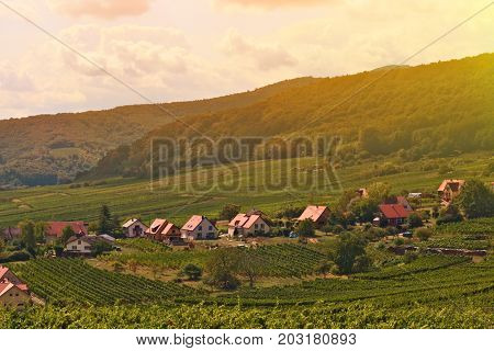 Atmosphere Landscape of romantic Europe small village with vineyard village in Summer