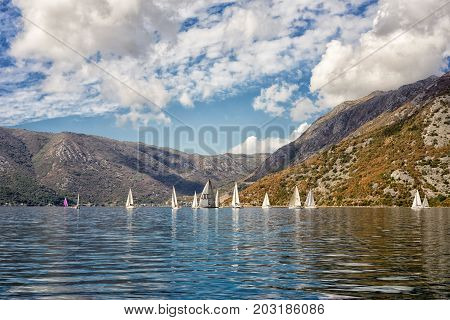 Risan Montenegro - September 3 2017: group of yachts in the Bay of Kotor Montenegro